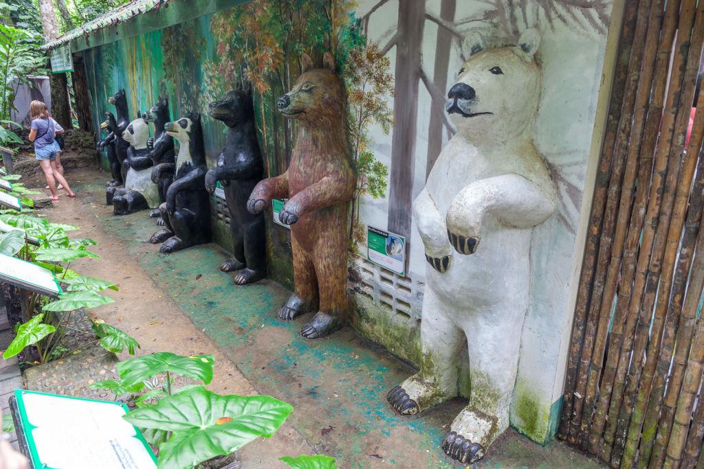 Водопад Куанг Си, Kuang Si Waterfall, Luang Prabang, Laos, Луанг Прабанг, Лаос, , достопримечательность, природа, горы, джунгли, медведь гималайский, зоопарк, Himalayan bear