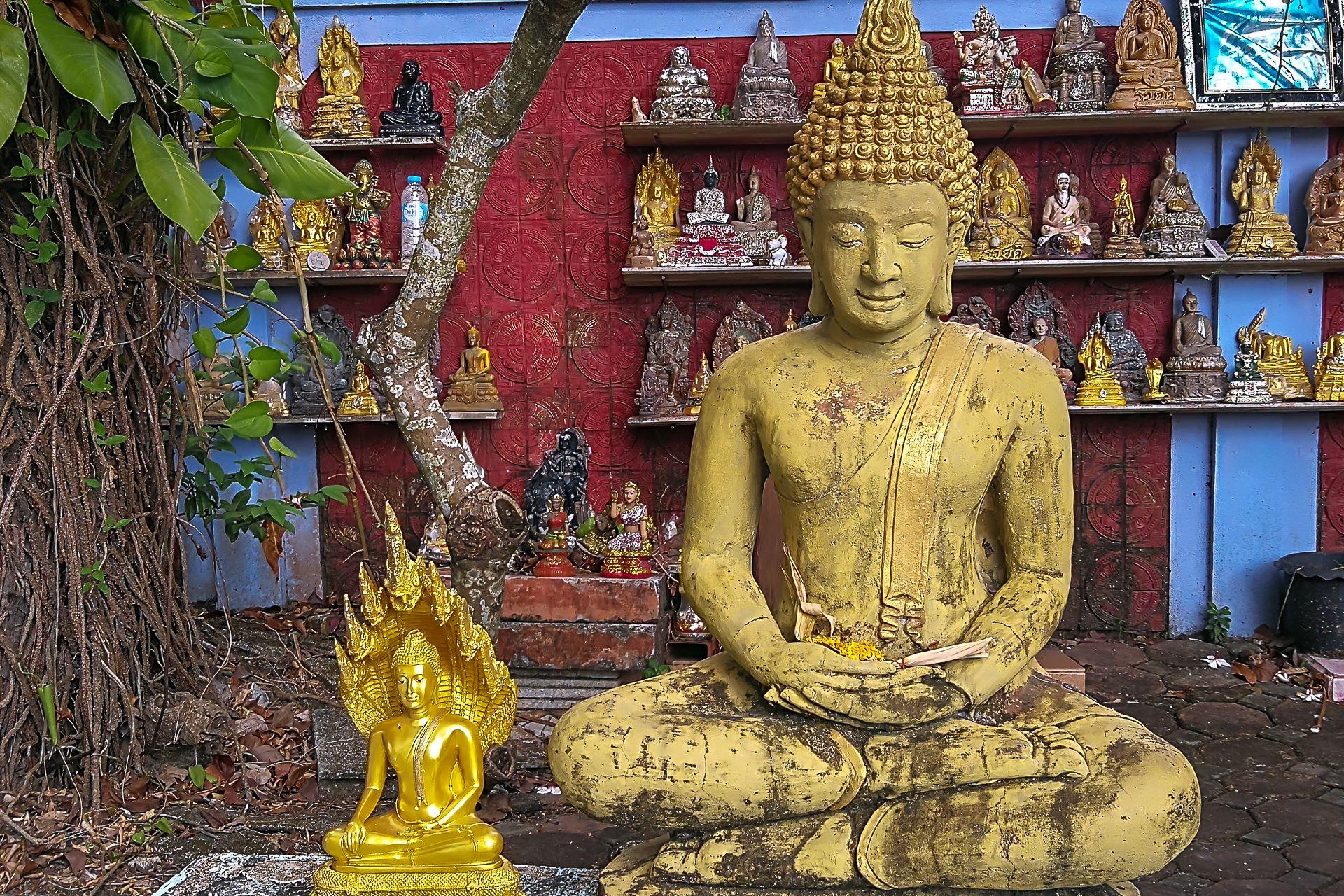 Wat Kunaram, Ват Кунарам, мумия, мумифицированный монах, монах, буддизм, Самуи, Тайланд, Таиланд, Samui, mummy, monk