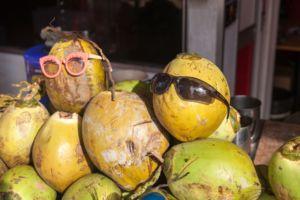 coconut, кокосы, кокосики, веселые кокосы, солнце, лето, очки, солнечные очки, Таиланд