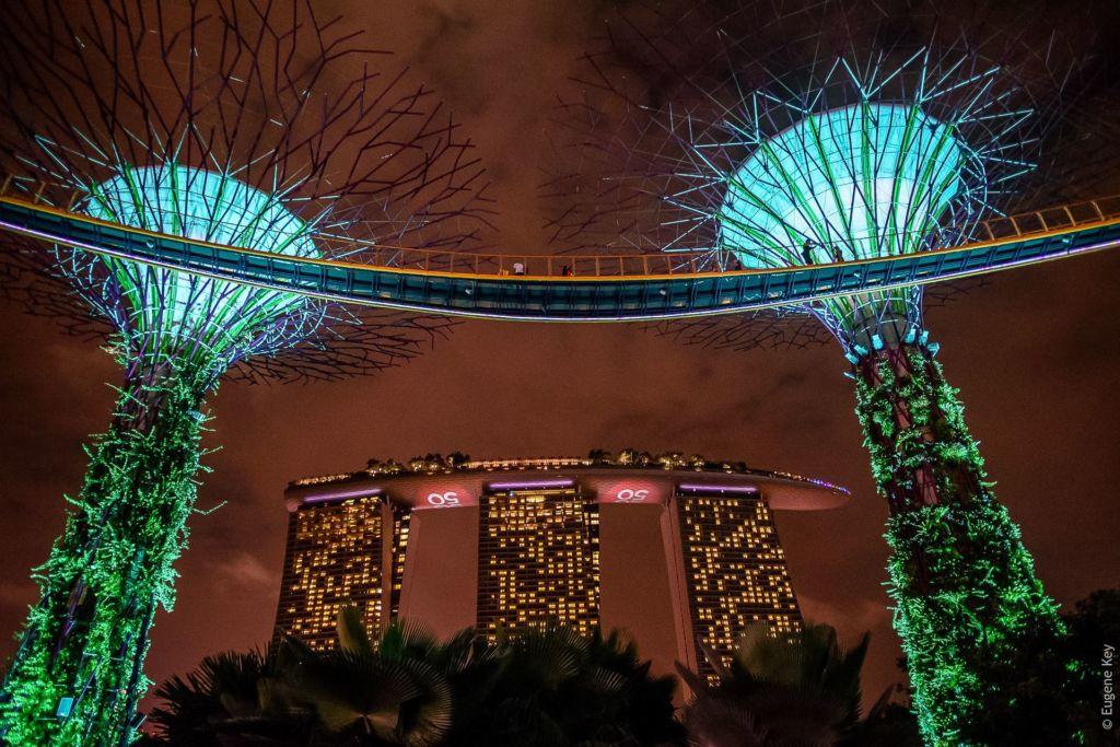 Singapore, Сингапур, достопримечательности Сингапура, что посмотреть в Сингапуре, Сингапур столица, сингапур отель, Сингапур марина , смотровая площадка, Марина бей сендс, марина бэй сингапур, сингапур марина, Сады у залива, Gardens by the Bay