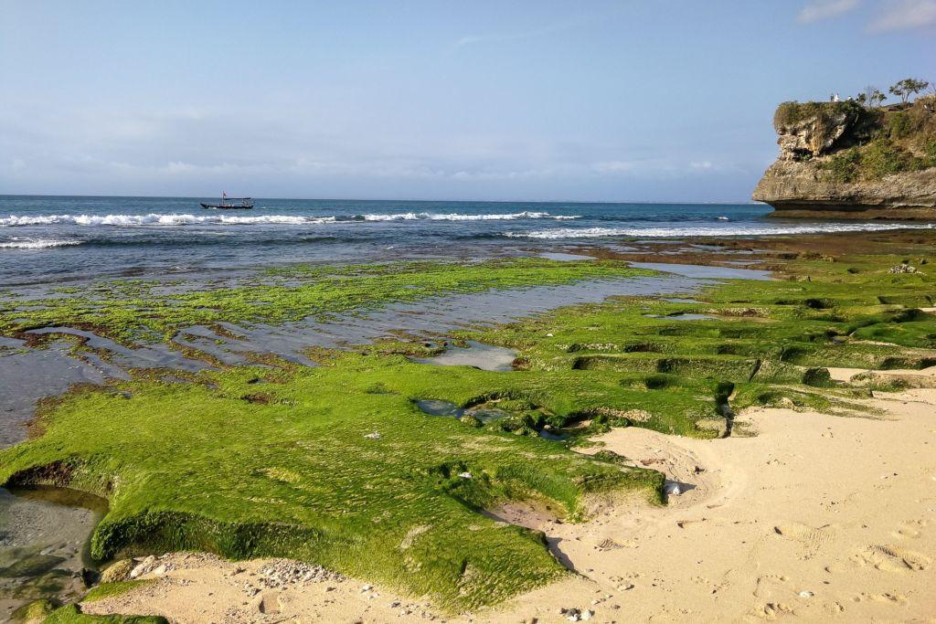 Bali, Indonesia, Bali beaches, beach bali, summer, ocean, sea, Bali sea, Indian ocean, Бали, пляжи Бали, пляжный отдых на Бали, где купаться на Бали, где белый песок на Бали, Бали море или океан, Индийский океан, море, лето, пляж, океан, волны, пляж баланган бали, баланган бали, баланган бич бали, balangan beach bali пляжи Бали Что вам надо знать про пляжи Бали? Balangan 4 1024x683