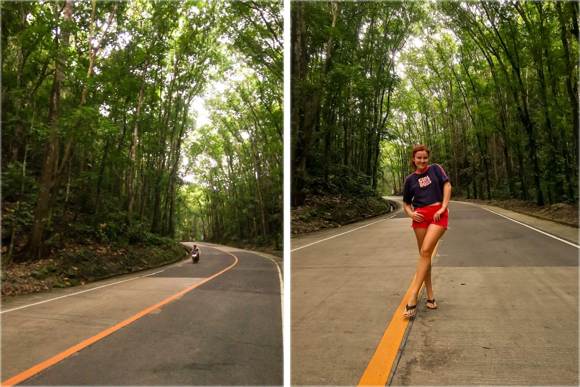 Филиппины, Бохол, Панглао, Бохол экскурсии, Бохол что посмотреть, Бохол долгопяты, Бохол тарсиеры, Бохол шоколадные холмы, шоколадные холмы, Панглао экскурсии, Панглао что посмотреть, интересные места на Бохоле, тур по Бохолу,