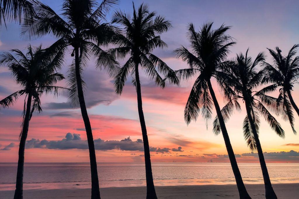 Филиппины фото, Филиппины сейчас, Филиппины, Боракай, Боракай Филиппины, Боракай 2021, новости Боракая, как попасть на Боракай, что интересного на Боракае, что делать на Боракае, развлечения на Боракае, лучшие пляжи мира, лучший пляж Филиппин, Белый пляж Боракай Филиппины, Вайт бич Боракай, Boracay White Beach, куда поехать на Филиппинах, Филиппины что посмотреть, Филиппины острова, Филиппины 2021, Боракай 2021, Филиппины отдых, Филиппины туры,